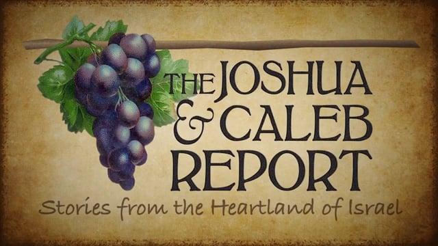 Joshua & Caleb Report
