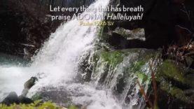Tefillah: Reflections for Prayer S01E05