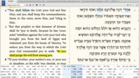 Rooted In Torah S01E17 (Reeh)