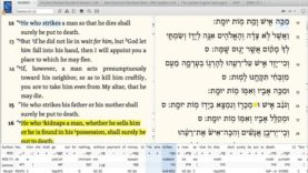 Rooted in Torah (Mishpatim)